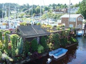Gibson Houseboat Flwr garden